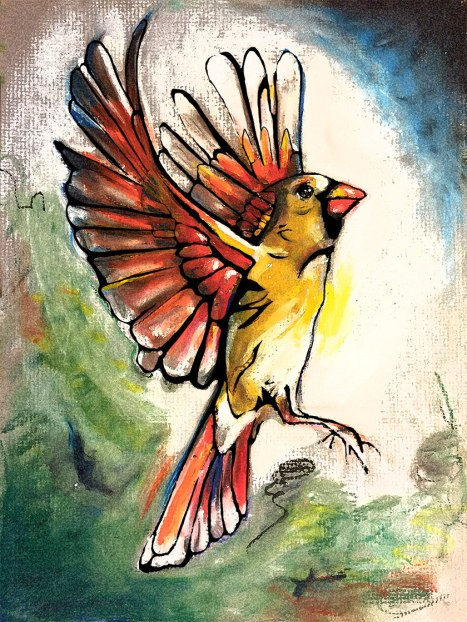 cardinalgloryWeb